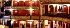 Štakori u Narodnom pozorištu